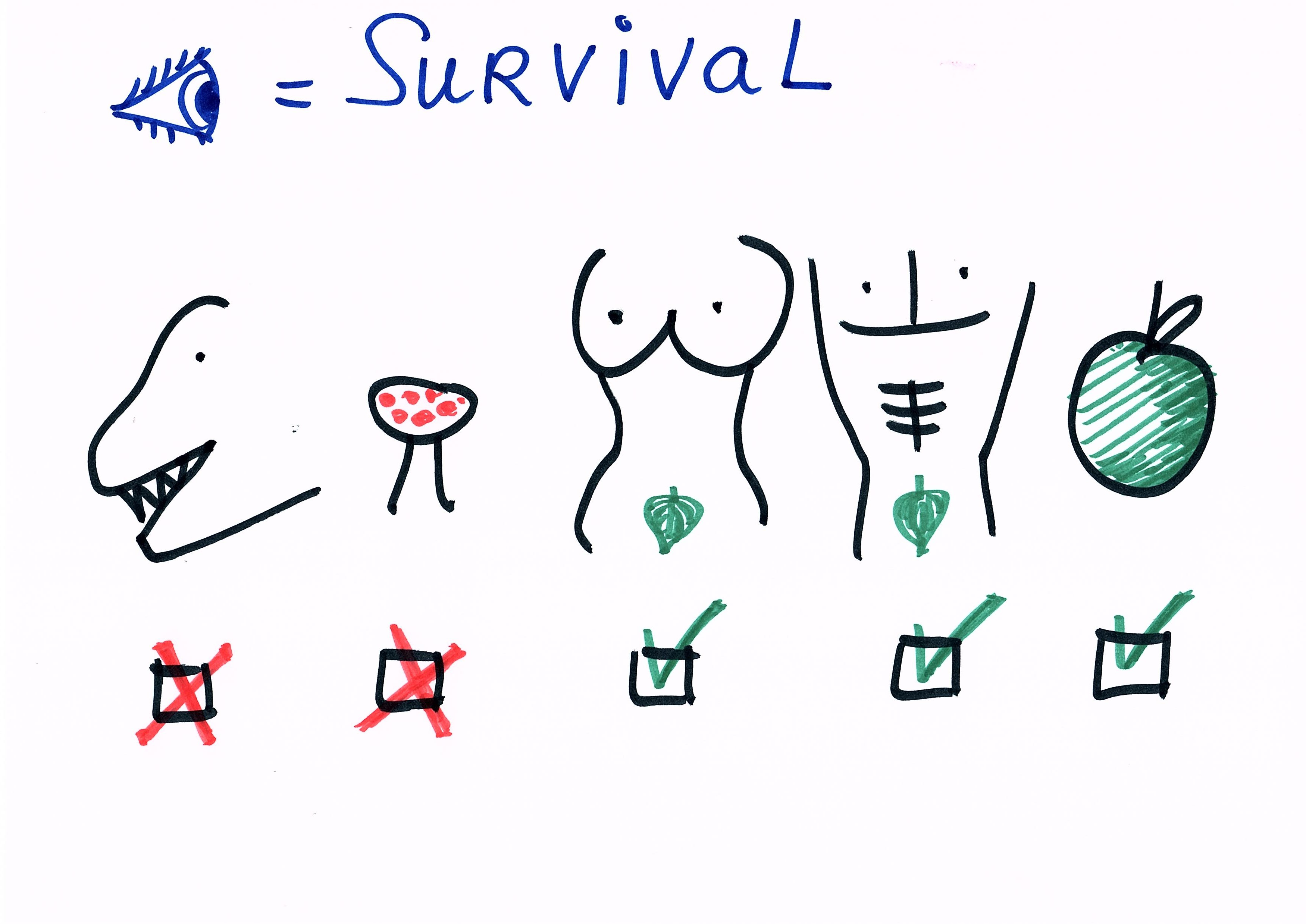 brein en survival