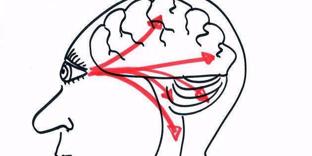 breinvriendelijk visueel trainen